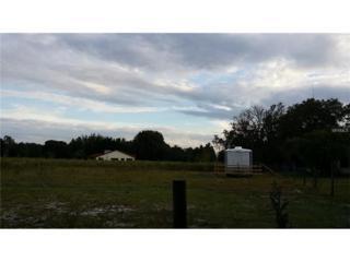 1029 Knowles Road, Brandon, FL 33511 (MLS #T2827335) :: The Duncan Duo & Associates