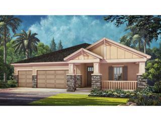 26749 Fiddlewood Loop, Wesley Chapel, FL 33544 (MLS #T2836593) :: The Duncan Duo & Associates