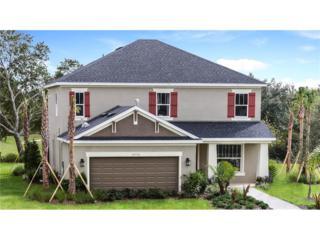 27196 Cooper Creek Court, Wesley Chapel, FL 33544 (MLS #T2836602) :: The Duncan Duo & Associates