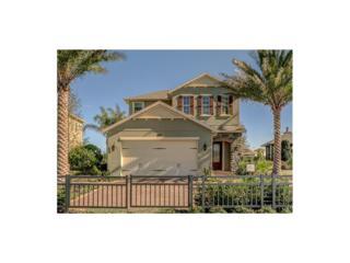 3970 Aldea Way, Wesley Chapel, FL 33543 (MLS #T2838327) :: The Duncan Duo & Associates