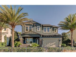 3988 Aldea Way, Wesley Chapel, FL 33543 (MLS #T2838346) :: The Duncan Duo & Associates