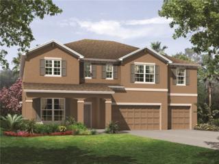 11620 Tetrafin#1019 Drive, Riverview, FL 33579 (MLS #T2840762) :: The Duncan Duo & Associates