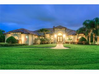 3501 Crenshaw Lake Road, Lutz, FL 33548 (MLS #T2844123) :: The Duncan Duo & Associates
