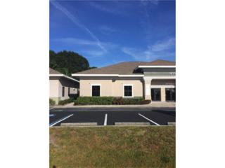 12546 Race Track Road E-1, Tampa, FL 33626 (MLS #T2846789) :: The Duncan Duo & Associates