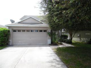 8564 Deer Chase Drive, Riverview, FL 33578 (MLS #T2846825) :: The Duncan Duo & Associates