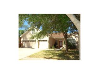 12505 Safari Lane, Riverview, FL 33579 (MLS #T2848320) :: The Duncan Duo & Associates