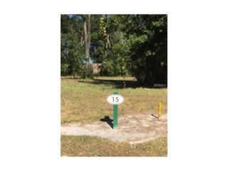 29509 Chapel Park Drive, Wesley Chapel, FL 33543 (MLS #T2851198) :: The Duncan Duo & Associates