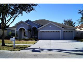 12509 Safari Lane, Riverview, FL 33579 (MLS #T2851791) :: The Duncan Duo & Associates