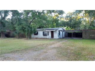 11114 Roberts Lane, Riverview, FL 33578 (MLS #T2851998) :: The Duncan Duo & Associates