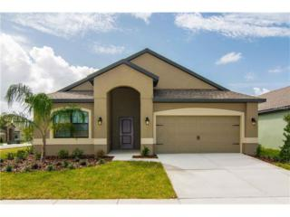 11873 Thicket Wood Drive, Riverview, FL 33579 (MLS #T2852369) :: The Duncan Duo & Associates