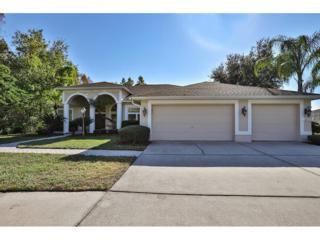 10207 Radcliffe Drive, Tampa, FL 33626 (MLS #T2853338) :: The Duncan Duo & Associates
