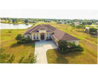 4908 Fawn Lake Place, Parrish, FL 34219 (MLS #T2854195) :: The Duncan Duo & Associates