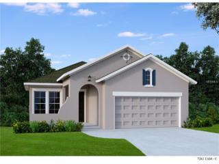 13913 Kingfisher Glen Drive, Lithia, FL 33547 (MLS #T2854511) :: The Duncan Duo & Associates