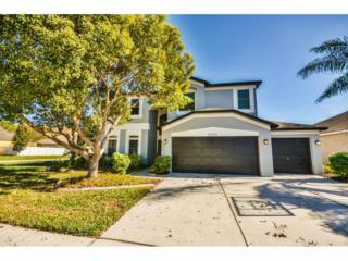 16329 Nikki Lane, Odessa, FL 33556 (MLS #T2854544) :: The Duncan Duo & Associates
