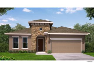 6005 Burrowing Owl Place, Lithia, FL 33547 (MLS #T2855026) :: The Duncan Duo & Associates