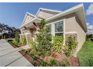6006 Sparrowhead Way, Lithia, FL 33547 (MLS #T2855526) :: The Duncan Duo & Associates