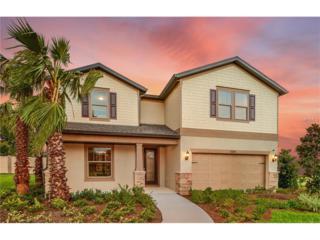 5014 Wabash Place, Riverview, FL 33578 (MLS #T2855624) :: The Duncan Duo & Associates