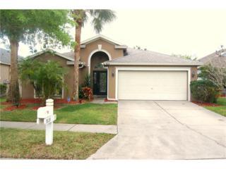 9809 Bayboro Bridge Drive, Tampa, FL 33626 (MLS #T2855647) :: The Duncan Duo & Associates