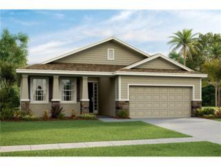 10614 Scenic Hollow Drive, Riverview, FL 33578 (MLS #T2855698) :: The Duncan Duo & Associates