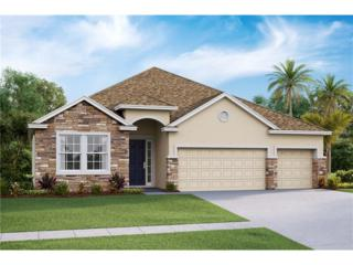 32390 Bannack Lane, Wesley Chapel, FL 33543 (MLS #T2855712) :: The Duncan Duo & Associates