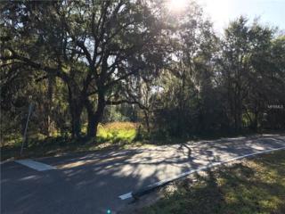 Crenshaw Lake Road, Lutz, FL 33548 (MLS #T2856333) :: The Duncan Duo & Associates