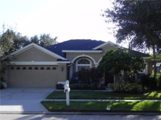 10210 Millport Drive, Tampa, FL 33626 (MLS #T2856844) :: The Duncan Duo & Associates