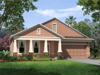 13341 Palmera Vista 0426 Drive, Riverview, FL 33579 (MLS #T2857563) :: The Duncan Duo & Associates