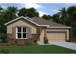 11941 Green Chop #0433 Place, Riverview, FL 33579 (MLS #T2857673) :: The Duncan Duo & Associates