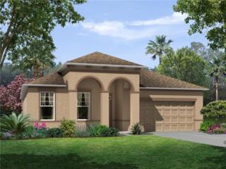 11931 Green Chop #0438 Place, Riverview, FL 33579 (MLS #T2857688) :: The Duncan Duo & Associates