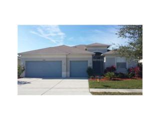 11410 Bridge Pine Drive, Riverview, FL 33569 (MLS #T2858275) :: The Duncan Duo & Associates