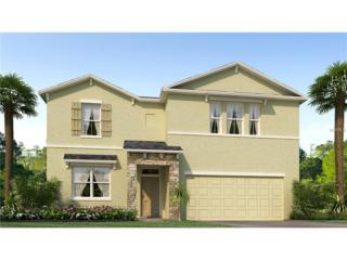 10610 Scenic Hollow Drive, Riverview, FL 33578 (MLS #T2859053) :: The Duncan Duo & Associates