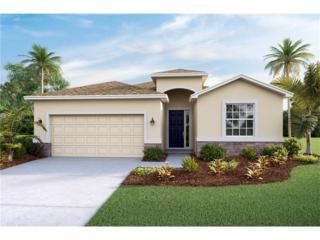 10508 Scenic Hollow Drive, Riverview, FL 33578 (MLS #T2859058) :: The Duncan Duo & Associates