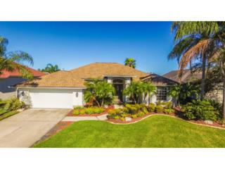 4319 Beau Rivage Circle, Lutz, FL 33558 (MLS #T2859062) :: The Duncan Duo & Associates