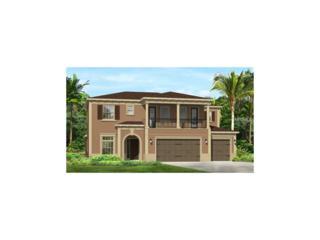 2707 Cordoba Ranch Boulevard, Lutz, FL 33559 (MLS #T2859944) :: The Duncan Duo & Associates
