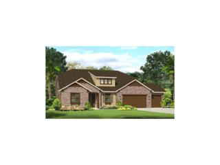 2709 Cordoba Ranch Boulevard, Lutz, FL 33559 (MLS #T2859948) :: The Duncan Duo & Associates