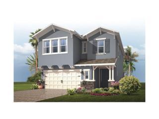 5918 Caldera Ridge Drive, Lithia, FL 33547 (MLS #T2860627) :: The Duncan Duo & Associates