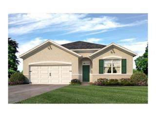 10531 Park Meadowbrooke Drive, Riverview, FL 33578 (MLS #T2861470) :: The Duncan Duo & Associates