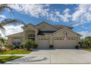 31612 Bearded Oak Drive, Wesley Chapel, FL 33543 (MLS #T2861480) :: The Duncan Duo & Associates