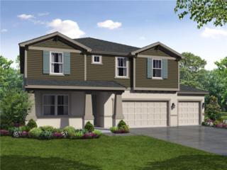 708 S Kingsfield Reserve Avenue, Brandon, FL 33511 (MLS #T2861891) :: The Duncan Duo & Associates