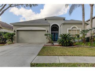 11823 Easthampton Drive, Tampa, FL 33626 (MLS #T2862635) :: The Duncan Duo & Associates
