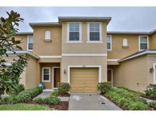 6729 Holly Heath Drive, Riverview, FL 33578 (MLS #T2862927) :: The Duncan Duo & Associates