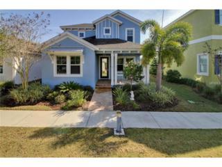 505 Winterside Drive, Apollo Beach, FL 33572 (MLS #T2863434) :: The Duncan Duo & Associates