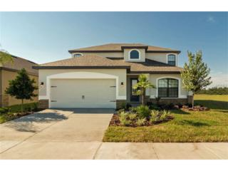 11868 Thicket Wood Drive, Riverview, FL 33579 (MLS #T2864216) :: The Duncan Duo & Associates