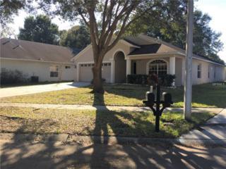 3405 Gray Whetstone Street, Brandon, FL 33511 (MLS #T2865083) :: The Duncan Duo & Associates