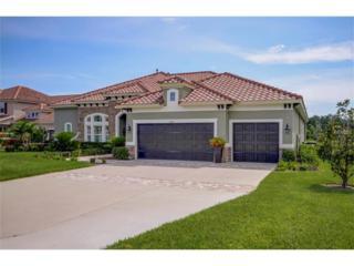 17425 Varona Place, Lutz, FL 33548 (MLS #T2865170) :: The Duncan Duo & Associates