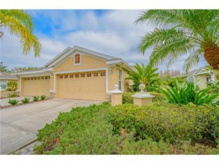 9871 Bridgeton Drive, Tampa, FL 33626 (MLS #T2865546) :: The Duncan Duo & Associates