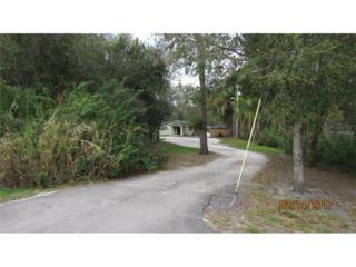 19514 N Dale Mabry Highway, Lutz, FL 33548 (MLS #T2865745) :: The Duncan Duo & Associates