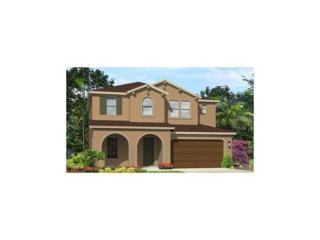 3608 Shadow Arbor Way, Lutz, FL 33548 (MLS #T2865916) :: The Duncan Duo & Associates