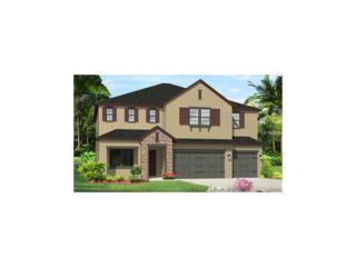 18106 Leafmore Street, Lutz, FL 33548 (MLS #T2865924) :: The Duncan Duo & Associates