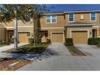 6723 Holly Heath Drive, Riverview, FL 33578 (MLS #T2865951) :: The Duncan Duo & Associates